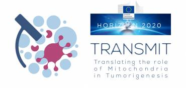 CALL FOR APPLICATION: JUNIOR PROJECT MANAGER FOR TRANSMIT