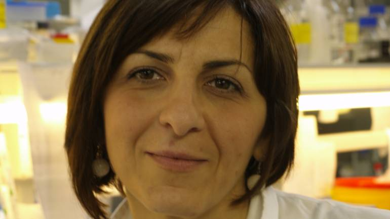 Anna Maria Porcelli